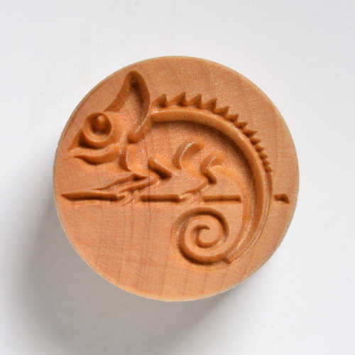 Chameleon Stamp for clay